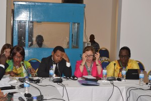 Pic 1- AU side event