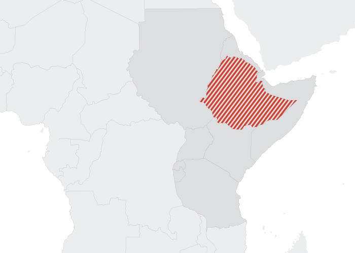 Defenddefenders ethiopia read more sciox Gallery